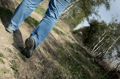 Pathfinder. Close-up photo of the man legs walking through the forest Royalty Free Stock Photo