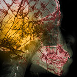 Pathogen abstract with x-ray film background on double exposure Stock Images
