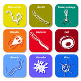 Pathogen icons. long shadow Royalty Free Stock Photo