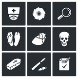 Pathologist and morgue icons Stock Photos