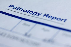 Pathology report Royalty Free Stock Photos