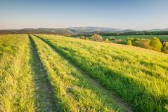 A pathroad in Bieszczady Mountains. A pathroad through the meadows in Bieszczady Mountains, Poland Royalty Free Stock Photos