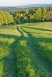 A pathroad in Bieszczady Mountains. A pathroad through the meadows in Bieszczady Mountains, Poland Stock Photo