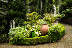 Paths in a Beautiful Garden at Monte above Funchal Madeira Royalty Free Stock Images