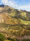 Paths on Huachuca mountains Royalty Free Stock Images