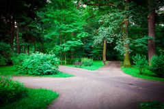 Paths In The Park Royalty Free Stock Images