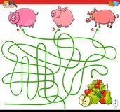 Paths maze game with pigs and apples Stock Photos