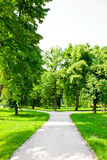 Paths in the park Royalty Free Stock Photography
