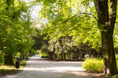 Paths in springtime Royalty Free Stock Photography