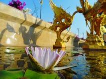 Pathum thani landmark. Royalty Free Stock Photography
