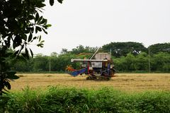 Pathum Thani, Tailandia 8 luglio 2018: Le mietitrici tailandesi dell'azionamento dell'agricoltore danno il riso sul campo in Tail immagini stock