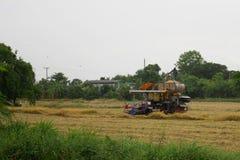 Pathum Thani, Thailand 8. Juli 2018: Thailändische Landwirt-Antriebserntemaschinen geben Reis auf Feld in Thailand stockbild