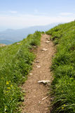 Pathway. In mountains aming green grass Stock Photos