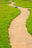Pathway. In Garden with concrete royalty free stock photos