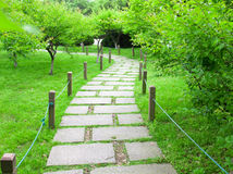 Pathway. Green leaves in the pathway on the spring Stock Images