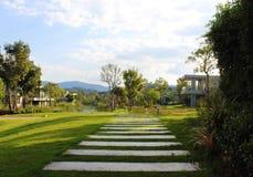 pathway Foto de Stock