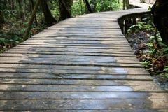 pathway Fotografia Stock