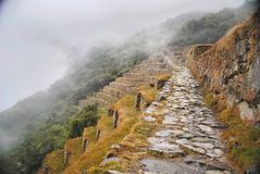 pathway Fotos de Stock Royalty Free