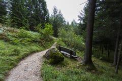 pathway Zdjęcia Stock
