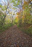Pathway along sand lake in the fall. In chain o' lakes state park royalty free stock image