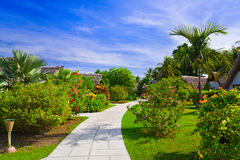 Pathway And Bungalows In Tropical Park Stock Image