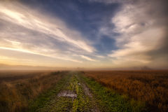 Pathway in the autumn fields Royalty Free Stock Images