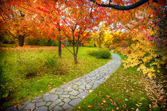 Pathway in autumn Stock Images