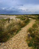 Pathway by beach. Scenic view of pathway by beach under cloudscape royalty free stock photo