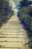 Pathway from the beach cinematic color grade royalty free stock images