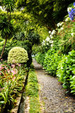 Pathway in a Beautiful Garden at Monte above Funchal Madeira Royalty Free Stock Images