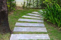 Pathway with a Beautiful gardening Stock Photos