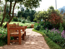 Pathway and benches in park. Beautiful park with pathway, and benches Stock Images