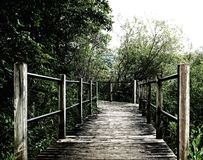 Pathway, Boardwalk of old wooden flooring in a park State of Michigan near the lake. Old photo stock photography
