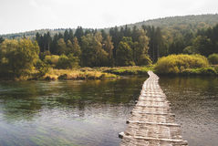 Pathway in Body of Water With Background of Forest Stock Image