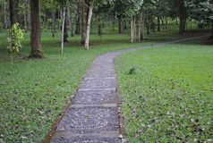 The pathway in the botanical garden of Bedugul Bali. The beauty of footpath in the botanical garden of Bedugul Bali stock photos
