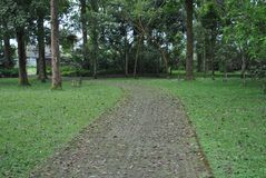 The pathway in the botanical garden of Bedugul Bali royalty free stock photography