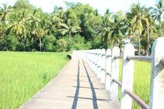 Pathway bridge. Across the field Stock Photography
