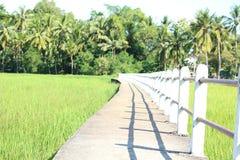 Pathway bridge. Across the field Stock Image