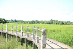 Pathway bridge. Across the field Royalty Free Stock Images