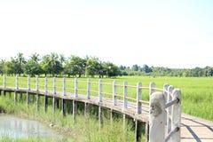 Pathway bridge. Across the field Stock Photos