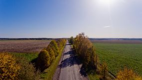 Pathway in the bright autumn. Aerial view Royalty Free Stock Images