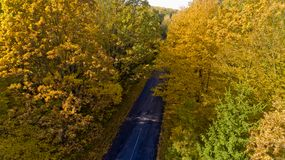 Pathway in the bright autumn forest. Aerial view royalty free stock photos