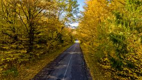 Pathway in the bright autumn forest. Aerial view royalty free stock image