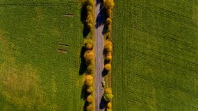 Pathway in the bright autumn. Top view Stock Images