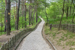 Pathway built of small stones in the forest Royalty Free Stock Photos