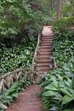 ' the pathway ' ceglana Zdjęcie Royalty Free