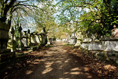 Pathway in cemetery grounds. This is an image of a path with moss infested tombstones and graves set to either side. There are trees with leaves beginning to royalty free stock image