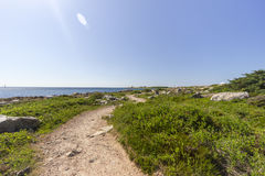 Pathway by the coastline in Sweden Royalty Free Stock Image