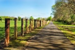 Pathway in countryside Royalty Free Stock Image