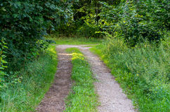 Pathway Stock Photography
